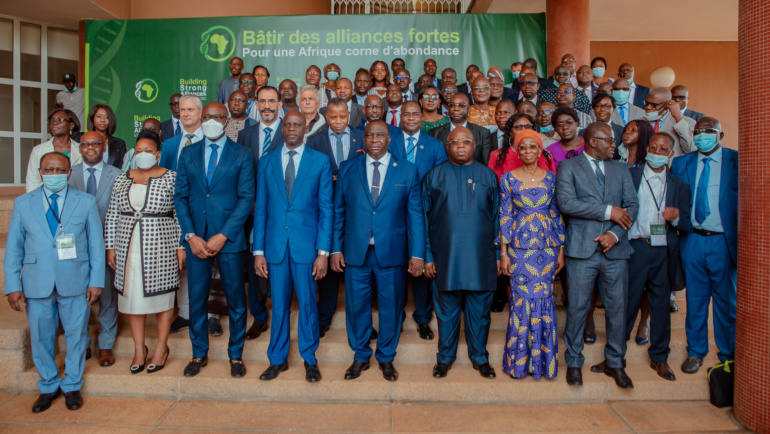 High level policy and technical dialogue on cassava viral diseases