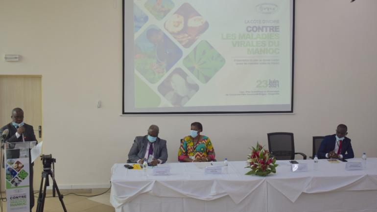 En route vers l'opérationnalisation des plans nationaux de prévention et  de riposte contre les maladies virales du manioc