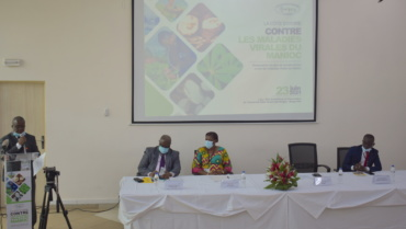 Towards the operationalization of national response plans for  the management of cassava viral diseases