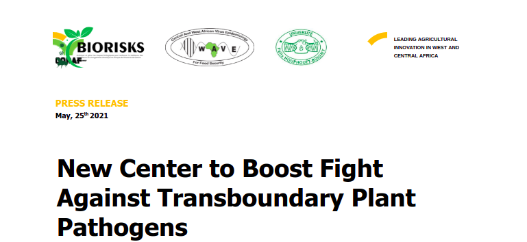 New Center to Boost Fight Against Transboundary Plant Pathogens
